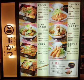 open_tamakatsu_02.JPG