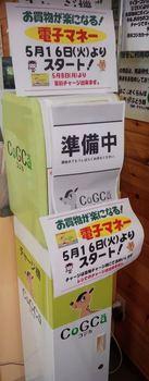start_cogca.JPG