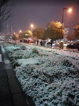 20180122_cntC_snow.JPG