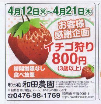 wadanouen_strawberry.JPG